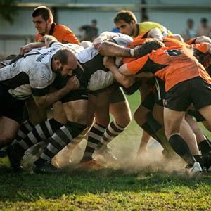 team building potentialis coaching